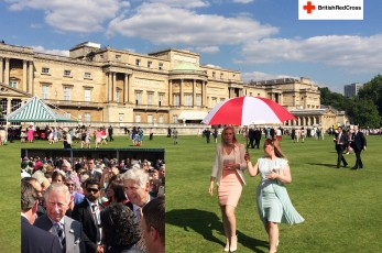 Royal Garden Party 12 June 2014